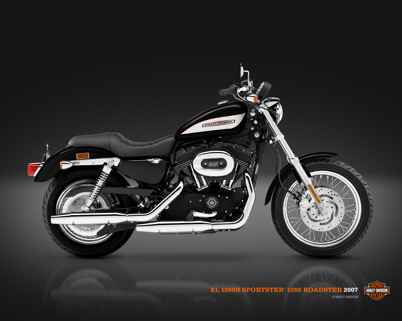 Couleurs 1200 Roadster Harley Davidson 2007